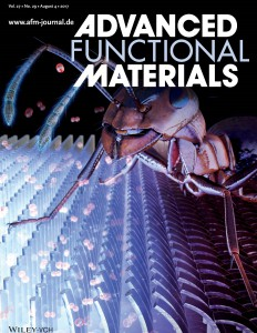 Han_et_al-2017-Advanced_Functional_Materials